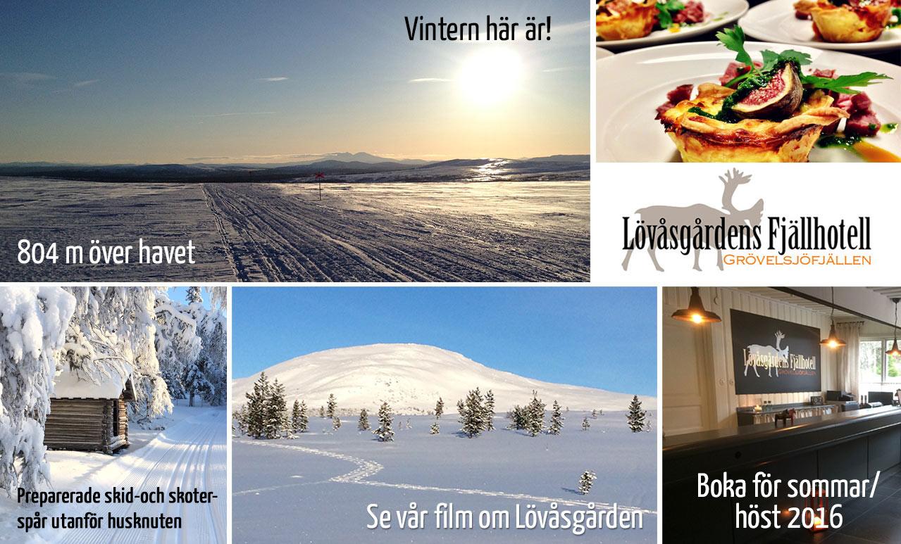 collage_vinter2